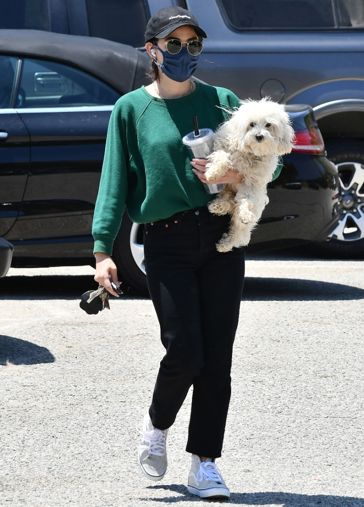 lucy hale, green sweatshirt, black pants, vans, gray sneakers, dog, sunglasses, hat, walk, park