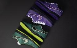 Concepts Nike SB Dunk Low Purple