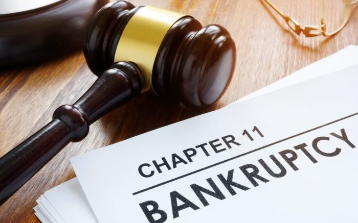 Chapter 11, bankruptcy