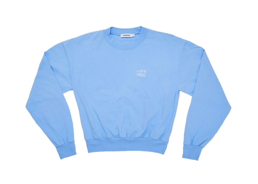 livin cool, livin cool sweatshirt, livin cool zaya wade, zaya wade, loungewear, hoodies, sweatpants, sweat set
