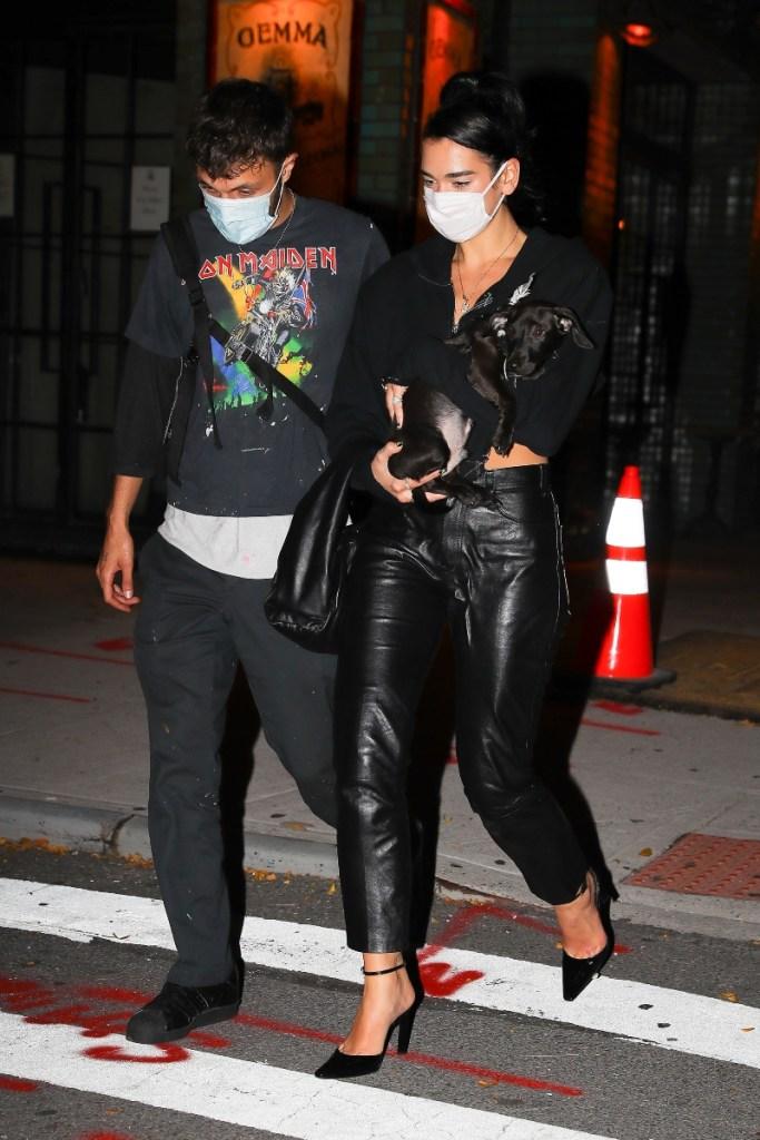 dua lipa, pants, leather, shoes, heels, black, pump, dog, anwar hadid, boyfriend, style
