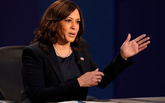 kamala harris, kamala harris joe biden, biden harris, 2020 election, vice presidential election, kamala harris shoes