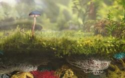 Bolt Threads Mylo Mushroom Fibers