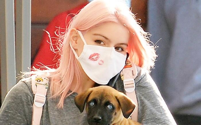 ariel-winter-puppy-style