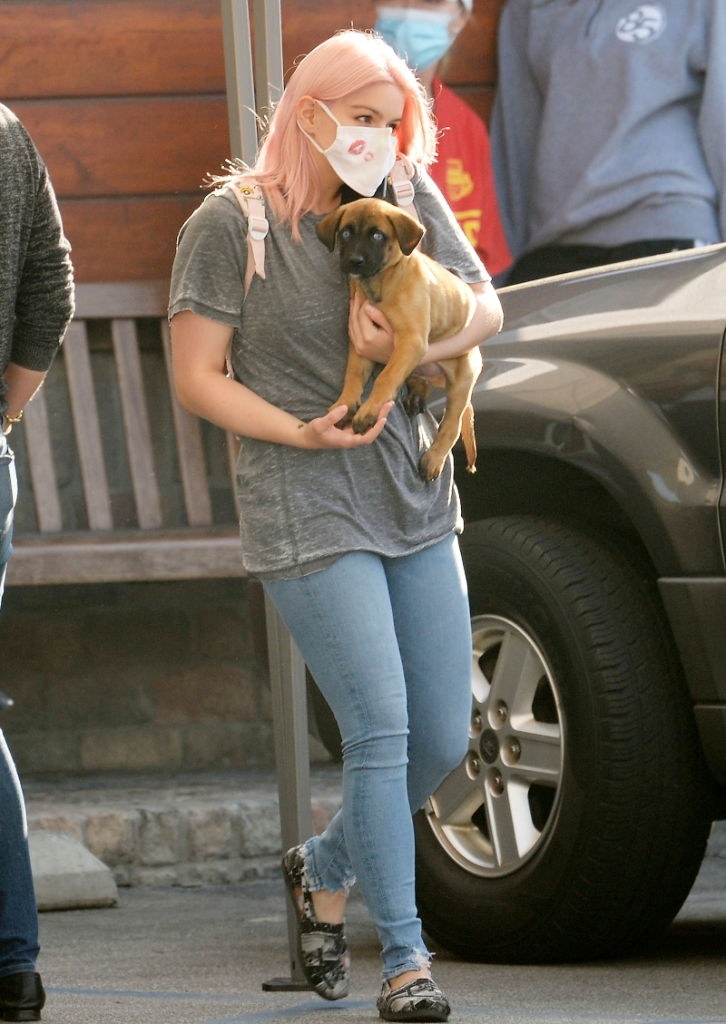 ariel winter, skinny jeans, shirt, shoes, toms, black white, pink hair, dog, puppy