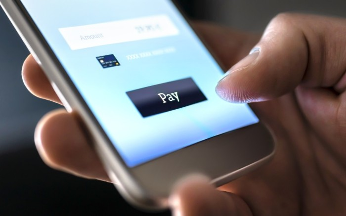 Smartphone displaying mobile checkout for e-ecommerce on screen
