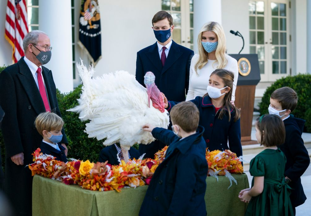 melania trump, thanksgiving, turkey pardon, skirt, coat, heels, shoes, white house