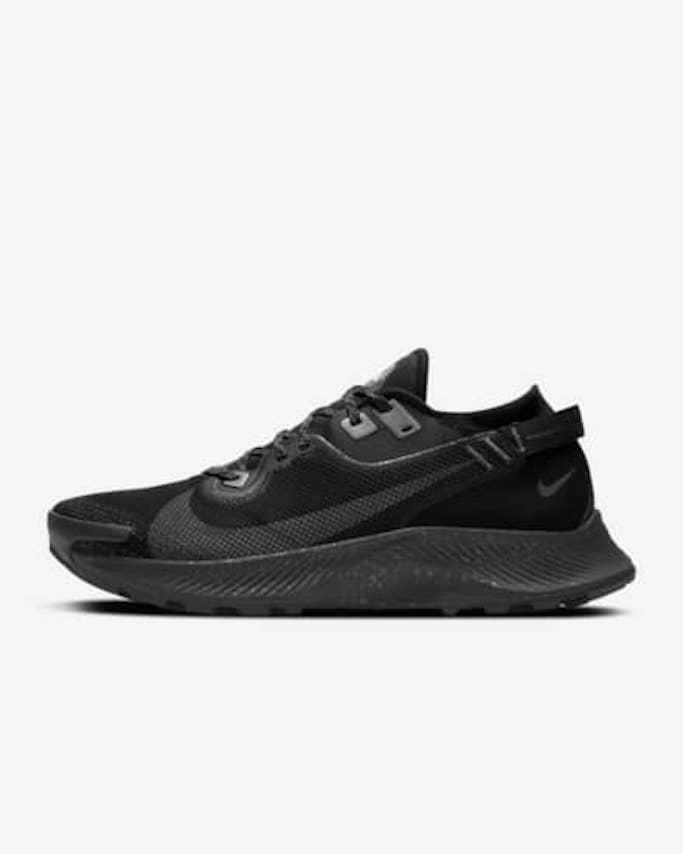 Nike-Pegasus-Gore-Tex-Sneakers-