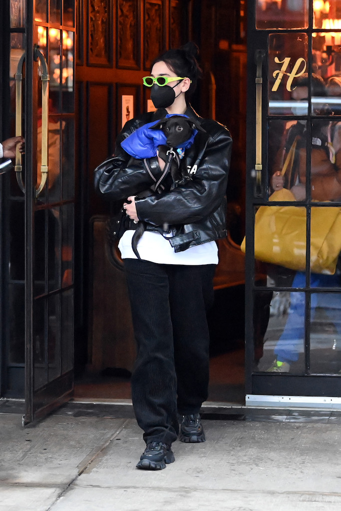 Dua Lipa leaves her New York City Hotel holding her puppy in her arms where fans waiting for her.Pictured: Dua LipaRef: SPL5203868 201220 NON-EXCLUSIVEPicture by: Elder Ordonez / SplashNews.comSplash News and PicturesUSA: +1 310-525-5808London: +44 (0)20 8126 1009Berlin: +49 175 3764 166photodesk@splashnews.comWorld Rights, No Poland Rights, No Portugal Rights, No Russia Rights