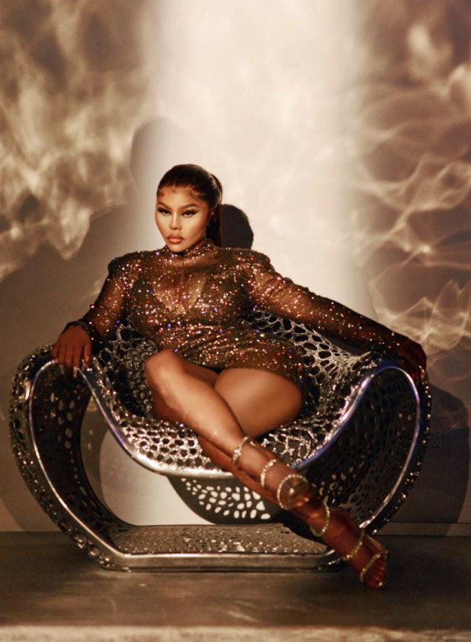 Lil Kim x PrettyLittleThing Mesh Bodycon Dress