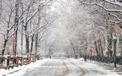 New York Winter Snow Storm Weather