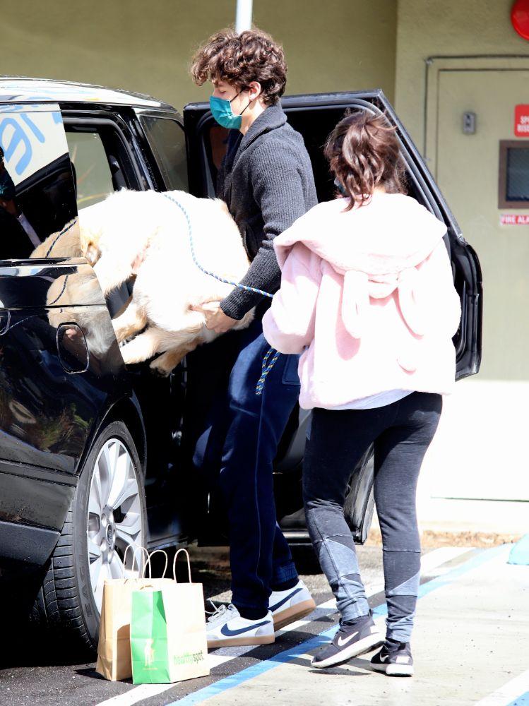 camila cabello, leggings, sweatshirt, jacket, pink, sneakers, nike, dog, shawn mendes, walk, la