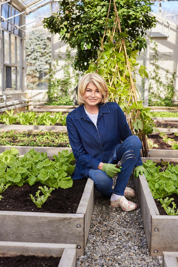 Martha Stewart Easy Spirit