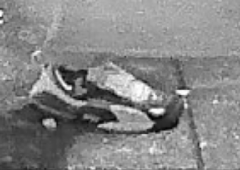fbi, suspect, capitol riots, pipe bomb, nike sneakers, turf