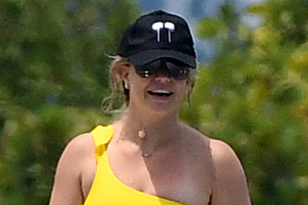 Britney Spears Hits Back at Critics of Her Instagram
