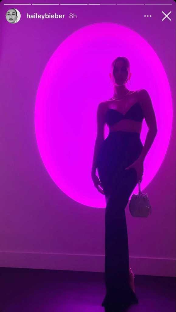 hailey baldwin, bralette, skirt, bra, heels, purse, stassie, birthday, party, la