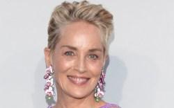 Sharon Stone, Dolce & Gabbana, amFAR