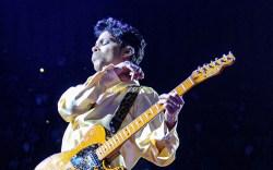 prince, musician, artist