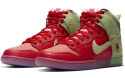 Todd Bratrud x Nike SB Dunk