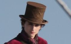 timothee chalamet, willy wonka, wonka, hat,